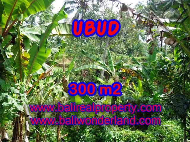 Beautiful Property for sale in Bali, LAND FOR SALE IN UBUD Bali – TJUB415