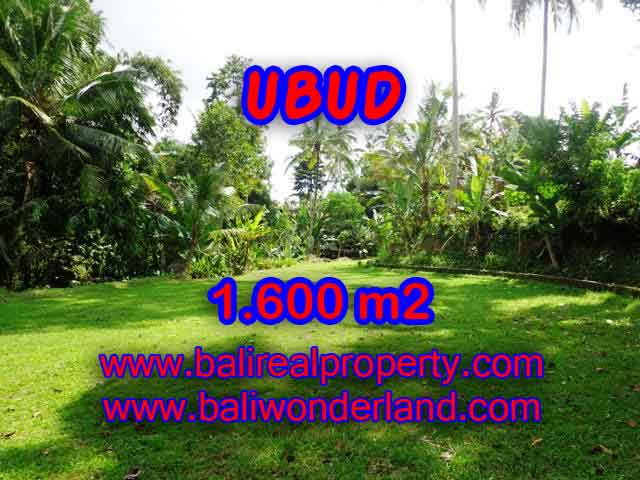 Beautiful Property for sale in Bali, land for sale in Ubud – TJUB416