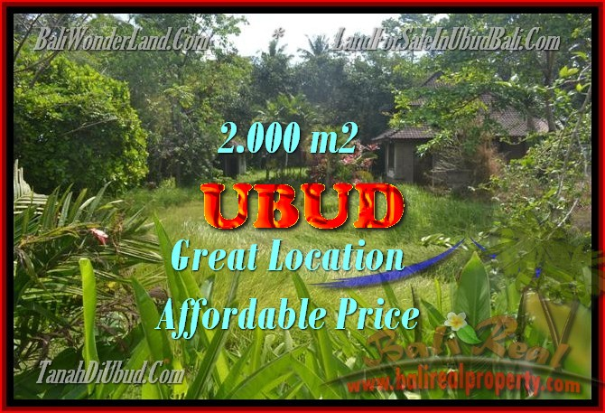 Exceptional Property in Bali, land for sale in Ubud Bali – TJUB429