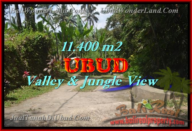 Land for sale in Ubud Bali, Unbelievable view in Ubud Payangan – TJUB431