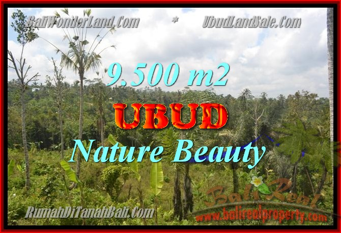 Magnificent Property for sale in Bali, land for sale in Ubud Bali – TJUB430