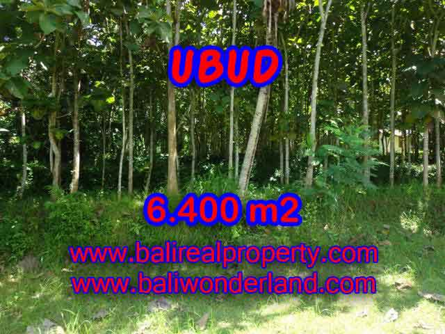 Land for sale in Bali, Fantastic view in Ubud Payangan – TJUB401