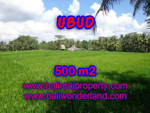 Land for sale in Bali, spectacular view in Ubud Bali – TJUB402