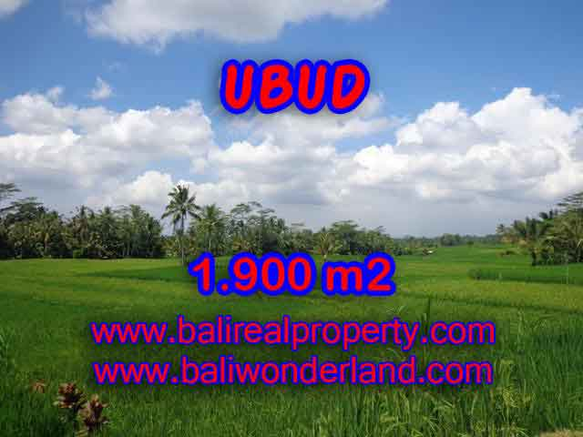 Land in Bali for sale, Stunning view in Ubud Bali – TJUB403