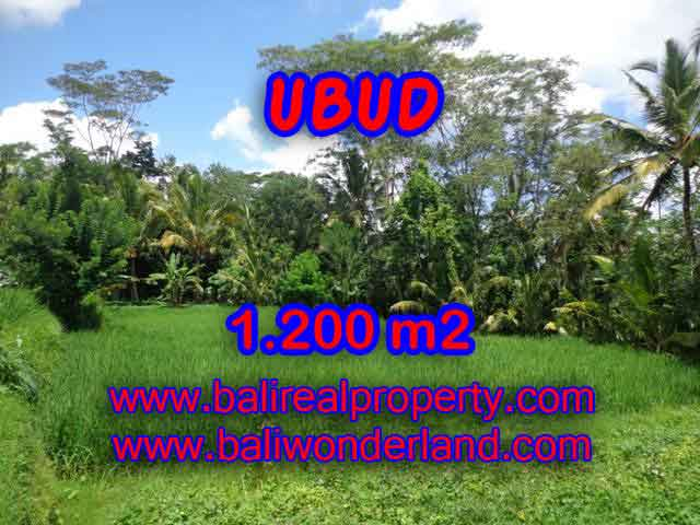 Land in Bali for sale, Outstanding view in Ubud Payangan Bali – TJUB404