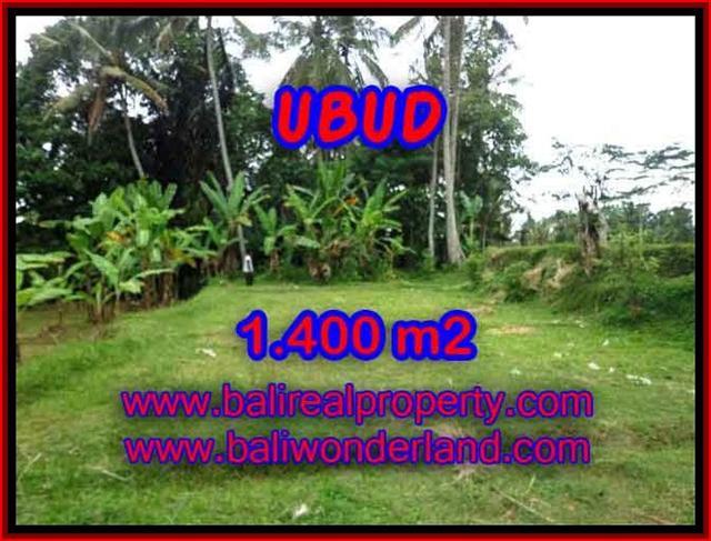 Wonderful Property in Bali for sale, land in Ubud Bali for sale – TJUB419