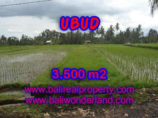 Magnificent Land for sale in Bali, ricefields, Forest and River view in Ubud Pejeng Bali – TJUB395