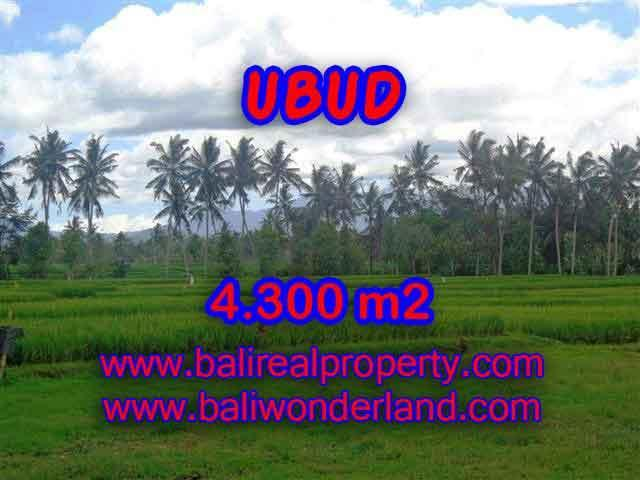 Magnificent Property for sale in Bali, land for sale in Ubud Bali – TJUB370