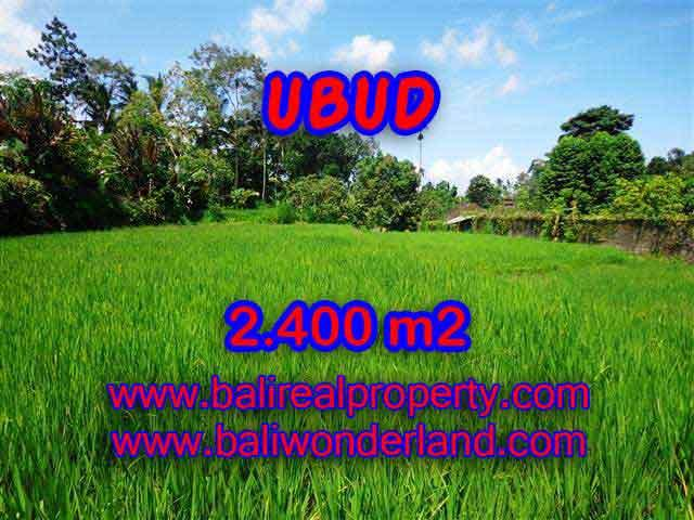 Extraordinary Land for sale in Ubud Bali, Rice paddy view in Ubud Tegalalang– TJUB390