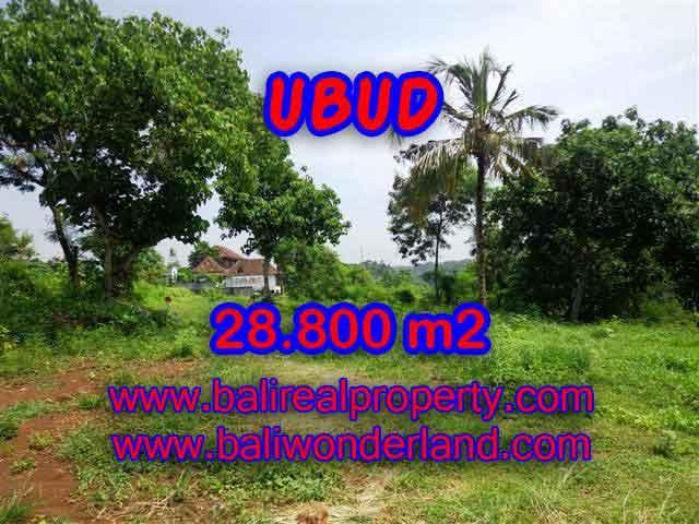 Excellent Property for sale in Bali, land for sale in Ubud Bali  – TJUB366
