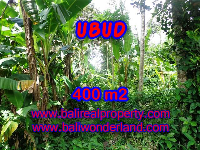Land for sale in Ubud Bali, Unbelievable view in Ubud Center – TJUB371