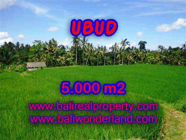 Land in Ubud for sale, Outstanding view in Ubud Tegalalang Bali – TJUB389