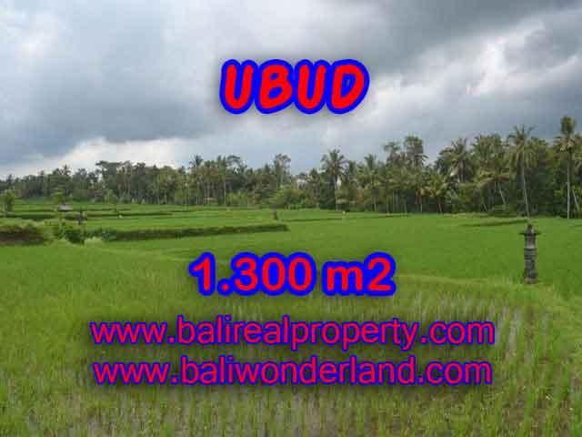 Land in Bali for sale, attractive view in Ubud Pejeng Bali – TJUB394