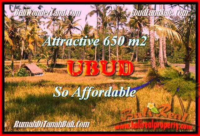 Beautiful PROPERTY 650 m2 LAND SALE IN Ubud Pejeng BALI TJUB455