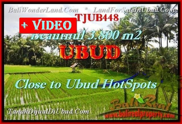 Beautiful PROPERTY LAND SALE IN UBUD BALI TJUB448