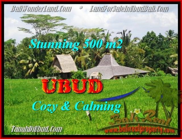 FOR SALE Affordable PROPERTY LAND IN Ubud Payangan TJUB459