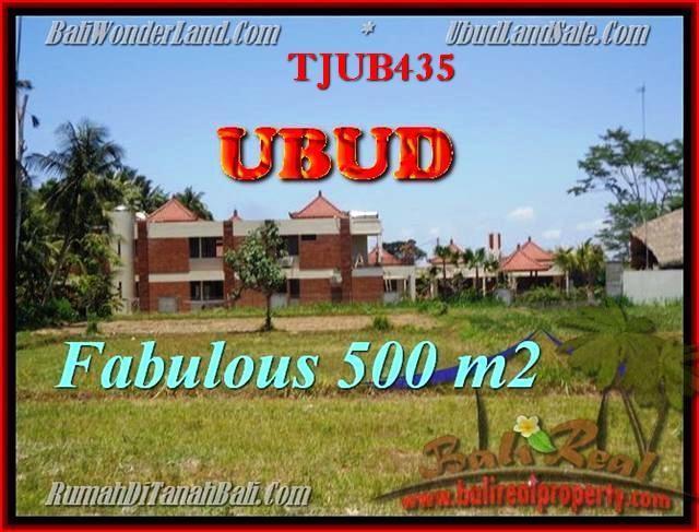 FOR SALE Beautiful PROPERTY LAND IN Sentral Ubud BALI TJUB435
