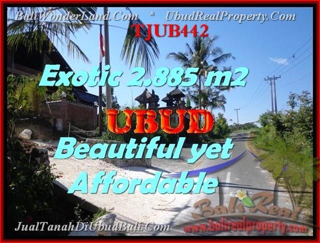 Affordable LAND IN Ubud Pejeng FOR SALE TJUB442