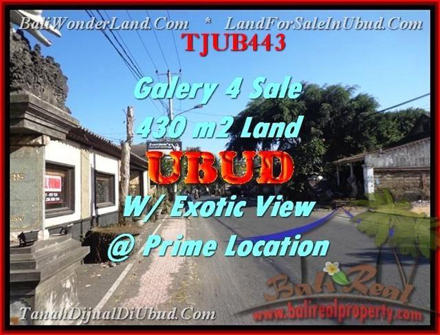 Exotic 430 m2 LAND FOR SALE IN UBUD TJUB443