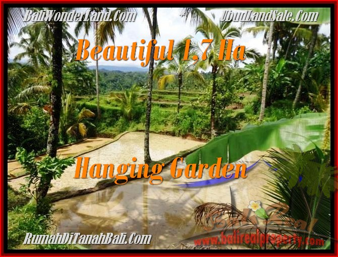 FOR SALE Exotic PROPERTY 17,000 m2 LAND IN UBUD TJUB470