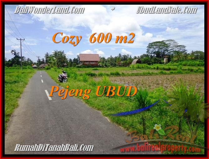 Magnificent PROPERTY 600 m2 LAND FOR SALE IN UBUD BALI TJUB465