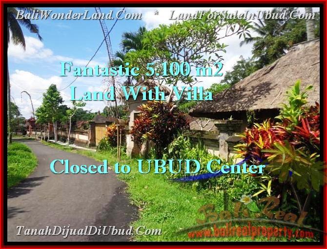 Exotic PROPERTY Ubud Pejeng BALI LAND FOR SALE TJUB468
