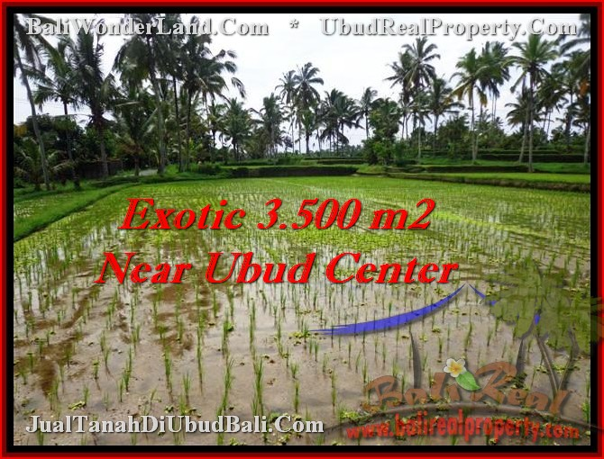 Magnificent UBUD 3,500 m2 LAND FOR SALE TJUB477
