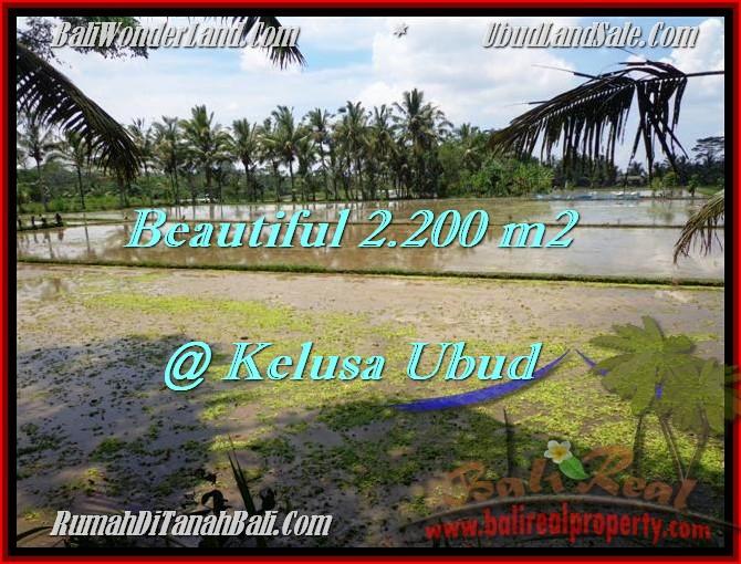 2,200 m2 LAND SALE IN UBUD TJUB475