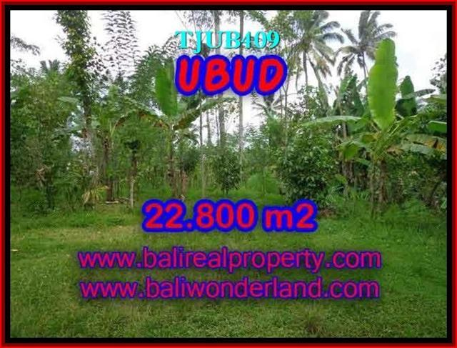 Magnificent PROPERTY UBUD BALI 22,800 m2 LAND FOR SALE TJUB409