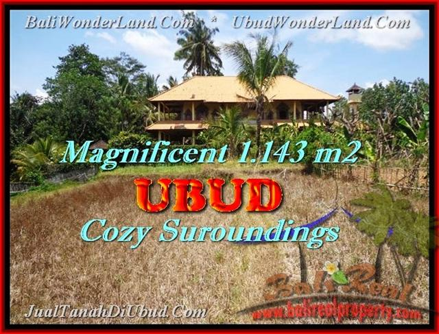 Beautiful 1.143 m2 LAND IN Sentral Ubud BALI FOR SALE TJUB460