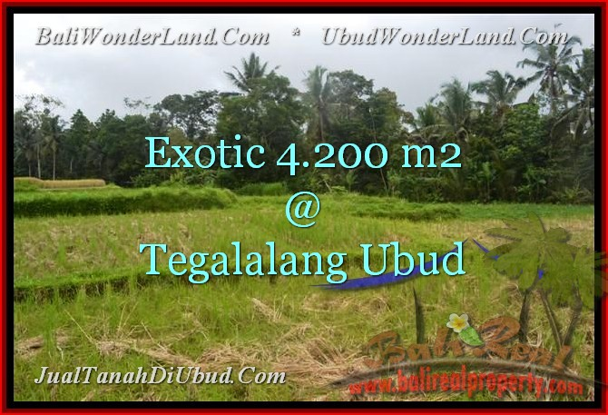 FOR SALE Beautiful LAND IN Ubud Tegalalang BALI TJUB461
