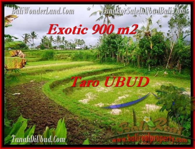 Magnificent LAND SALE IN Ubud Tegalalang BALI TJUB464