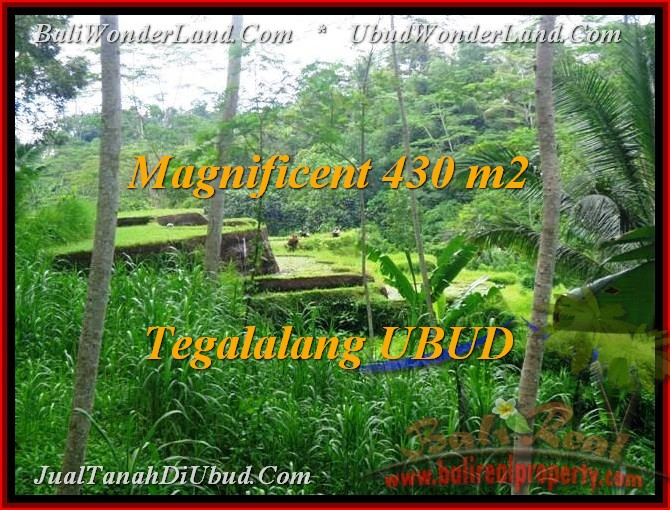 Beautiful 430 m2 LAND IN UBUD BALI FOR SALE TJUB466
