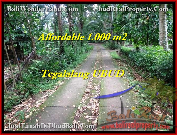 Affordable LAND IN Ubud Tegalalang BALI FOR SALE TJUB467
