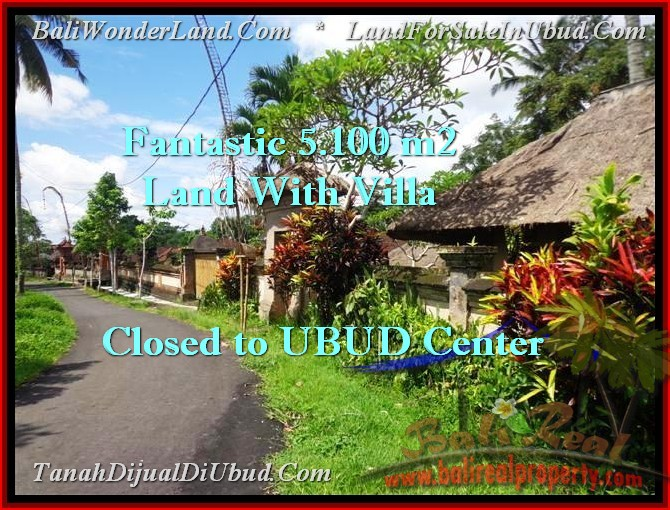 Affordable PROPERTY UBUD BALI 5,100 m2 LAND FOR SALE TJUB468