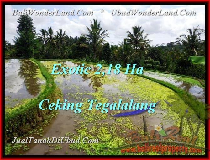 UBUD 21,800 m2 LAND FOR SALE TJUB471