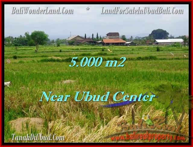 Magnificent PROPERTY LAND FOR SALE IN UBUD TJUB474