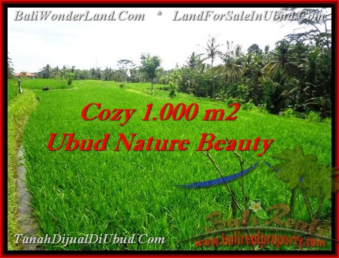 Magnificent UBUD 1,000 m2 LAND FOR SALE TJUB478