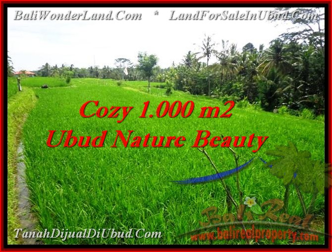 Magnificent PROPERTY 1,000 m2 LAND FOR SALE IN Ubud Tegalalang TJUB478