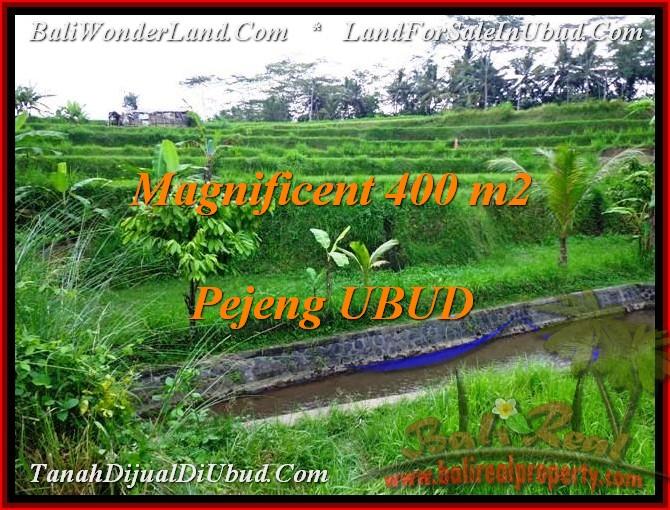 Exotic PROPERTY 400 m2 LAND IN UBUD BALI FOR SALE TJUB483