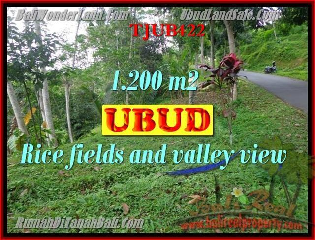 Affordable 1,200 m2 LAND IN UBUD FOR SALE TJUB422