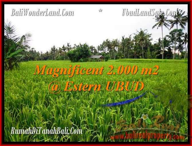 Exotic PROPERTY 2,000 m2 LAND IN UBUD BALI FOR SALE TJUB485