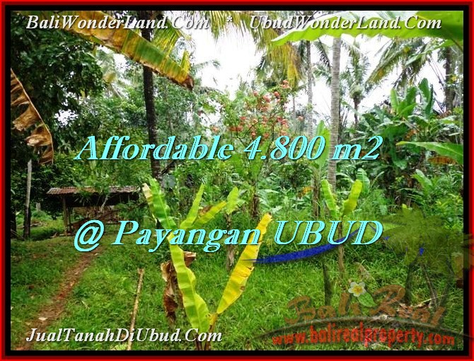 FOR SALE Exotic PROPERTY LAND IN Ubud Payangan BALI TJUB486