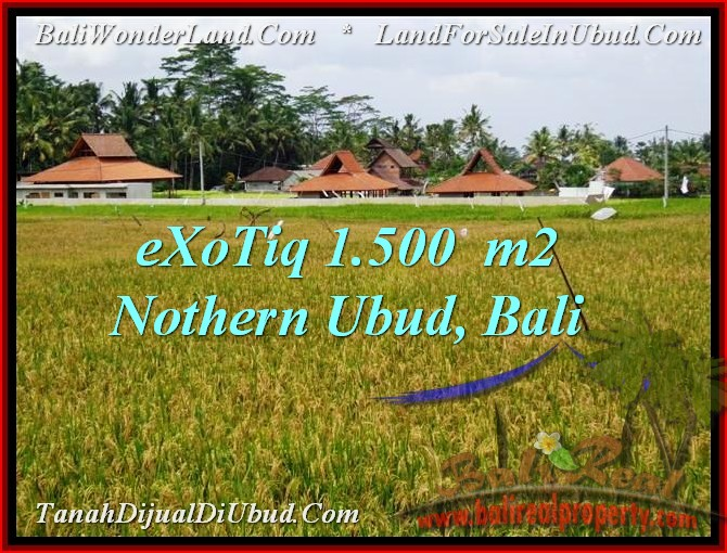 Magnificent LAND IN Sentral Ubud BALI FOR SALE TJUB488