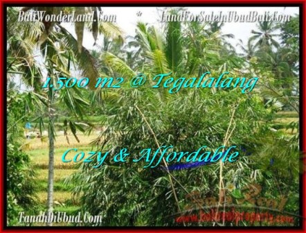 Exotic LAND FOR SALE IN Ubud Tegalalang BALI TJUB489