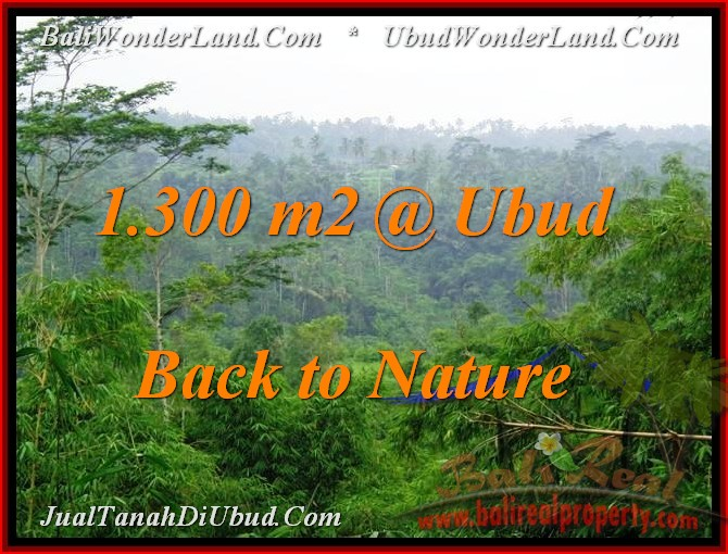 Magnificent PROPERTY 1,300 m2 LAND FOR SALE IN Ubud Tegalalang TJUB481