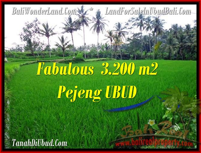 Beautiful PROPERTY Ubud Pejeng 3,200 m2 LAND FOR SALE TJUB484