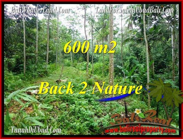 600 m2 LAND IN UBUD FOR SALE TJUB493