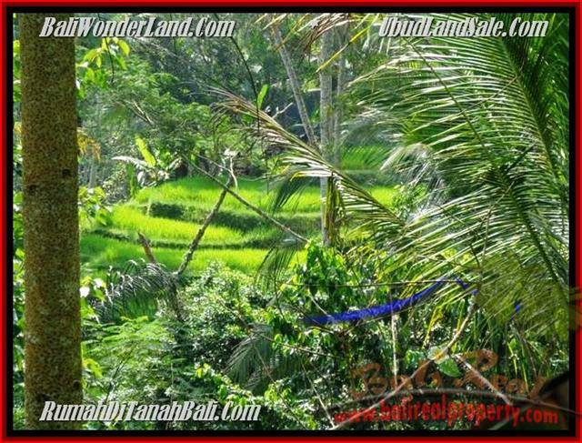725 m2 LAND IN UBUD FOR SALE TJUB495
