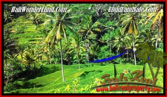 FOR SALE Magnificent 2,500 m2 LAND IN UBUD TJUB496